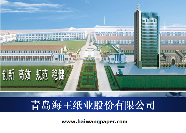青岛海王纸业股份有限公司